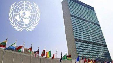 Photo de La Mauritanie élue membre dans 4 organismes des Nations Unies
