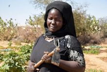 Photo de Réfugiés et Mauritaniens partagent leurs stratégies d'adaptation au changement climatique