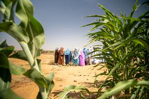 Photo de UECHO et le PAM renouvellent leur partenariat dans la lutte contre l'insécurité alimentaire en Mauritanie